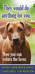 Rhodesian Ridgeback Charitable Foundation